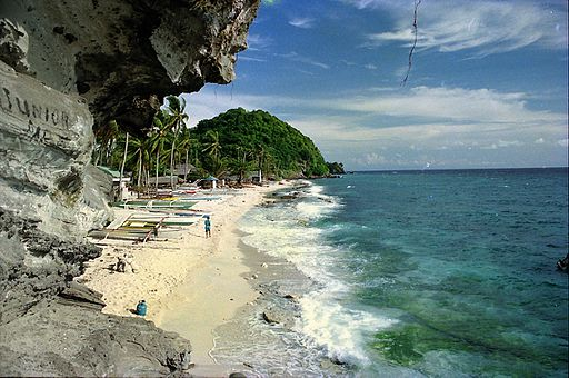 Apo island view