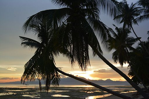 Siquijor beach at nightfall