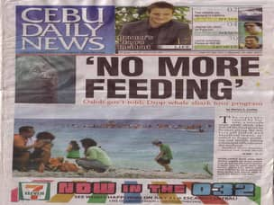 Cebu paper article against whale shark feeding